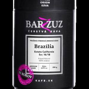 salockari-barzzuz-plech-brazilia-w
